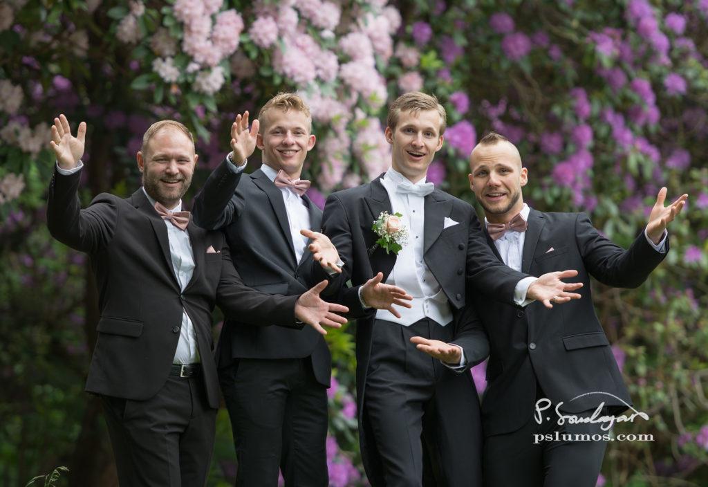 Marskalk och brudgummen