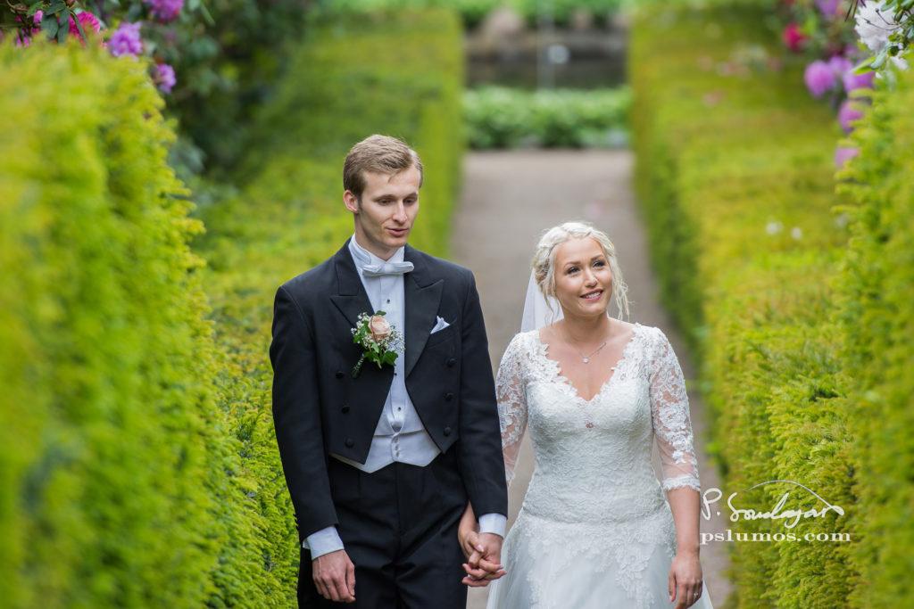 Porträttbilder bröllop